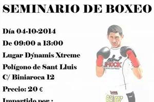 seminario boxeo d